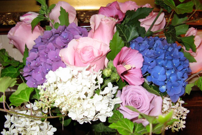 summer hydrangea and rose of sharon